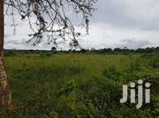 Mukono Plot on Sale | Land & Plots For Sale for sale in Central Region, Kampala