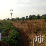 An Acre and 8 Decimal Plot of Land for Sale in Kira at 230m | Land & Plots For Sale for sale in Central Region, Kampala