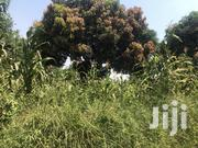 Land for Selling Kira | Land & Plots For Sale for sale in Central Region, Kampala
