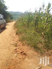 Plots, Gayaza Busiika Road, Kats and Deo Surveys LTD | Land & Plots For Sale for sale in Central Region, Wakiso