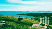 Cheap Land Touching the Lake | Land & Plots For Sale for sale in Central Region, Mukono