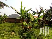 A 23 Decimal Plot for Sale in Makenke, 2.5KM From Gayaza Town | Land & Plots For Sale for sale in Central Region, Wakiso