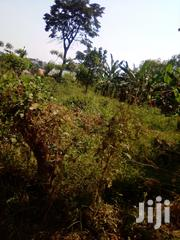 Mukono Plot of Land for Sale | Land & Plots For Sale for sale in Central Region, Kampala