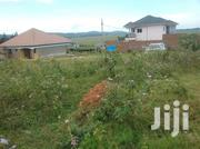 60 By 100ft Plot In Nkumba | Land & Plots For Sale for sale in Central Region, Kampala