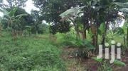100acres FARMLAND in KAYABWE Along Masaka Road at 8M Per Acre. | Land & Plots For Sale for sale in Central Region, Kampala