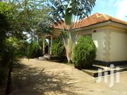 Naturally-lit 5bedroom Bungalow In Kireka Mbalwa At 350M | Houses & Apartments For Sale for sale in Central Region, Kampala
