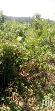 🦅1.5acres🦅  For Sale at  Gayaza-Nakasajja  Just 1.5km Off Tarmac | Land & Plots For Sale for sale in Central Region, Kampala