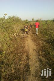 A 50 by 100 Ft Plot of Land Along Entebbe Road, 3.1 Km Off Kawuku   Land & Plots For Sale for sale in Central Region, Wakiso