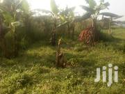 Land In Kiwenda Gayaza Road For Sale | Land & Plots For Sale for sale in Central Region, Wakiso