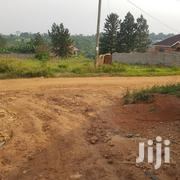 Land on Sale at UGX 35m in Gayaza Town | Land & Plots For Sale for sale in Central Region, Kampala