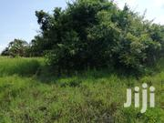 4 Square Miles In Nakasongola Kichuba Village For Sale At 2m Per Acre | Land & Plots For Sale for sale in Central Region, Luweero