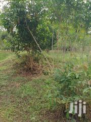 2000 Acres In Kitugum For Sale | Land & Plots For Sale for sale in Nothern Region, Kitgum