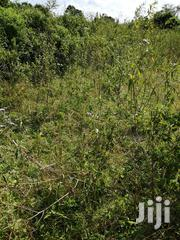 1 Acre And 2 Acres In Lukaya Kiti For Sale | Land & Plots For Sale for sale in Central Region, Masaka