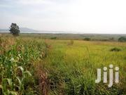 Very Beautiful Two Acres With Lake View on Quicksale in Bweya Ntebe Rd | Land & Plots For Sale for sale in Central Region, Kampala