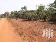 3 Acres for Sale in Zirobwe Town | Land & Plots For Sale for sale in Central Region, Kampala