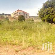 They Are Ppots for Sale in Kitovu Ebb Rd 100*100ft at 55M Ugx | Land & Plots For Sale for sale in Central Region, Kampala