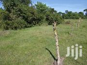 Land In Kyotera Masaka Road For Sale | Land & Plots For Sale for sale in Central Region, Kampala