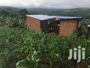Farm In Mpigi For Rent | Commercial Property For Rent for sale in Central Region, Mpigi