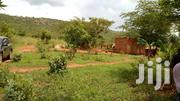 29acres Of Land In Gayaza-kikyusa With Ready Title,Fertile,Each At 4m | Land & Plots For Sale for sale in Central Region, Luweero