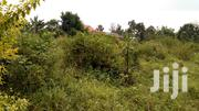 50*100ft Plot in Namugongo-Joggo on Quick Sale at 27m | Land & Plots For Sale for sale in Central Region, Wakiso