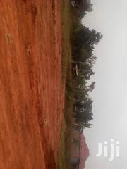 70 Metres Off the Main Rd Titled 50x100 Plots 2km From Kakiri on Hoima | Land & Plots For Sale for sale in Central Region, Luweero