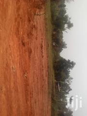 3 Titled Acres in Mulago Kampala at 2.5bn UGX Each Selling One Onwards | Land & Plots For Sale for sale in Central Region, Kampala