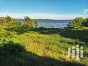 20 Acres Of Land On Sale In Katosi Mukon On Lake  Victoria | Land & Plots For Sale for sale in Central Region, Kampala