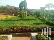 This Full Package On One Acre With Home Chicken Farm Under Groud Water | Houses & Apartments For Sale for sale in Central Region, Kampala