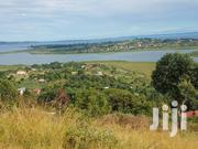 50 Decimals Lake Side View Lutembe 1km From Entebbe Rd at 350M | Land & Plots For Sale for sale in Central Region, Wakiso