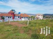 Two Plots on Quick Sale in Heart of Buziga Uphill at Give Away Prices   Land & Plots For Sale for sale in Central Region, Kampala