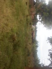 156x100 Titled Plot in Kasangati Gayaza Rd 4km Off Main | Land & Plots For Sale for sale in Central Region, Kampala