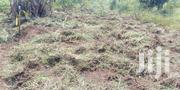 Land for Sale | Land & Plots For Sale for sale in Western Region, Hoima