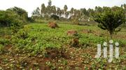 4acres of Land in Kasanje With Ready Title Each at 25m | Land & Plots For Sale for sale in Central Region, Wakiso
