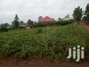 Bombo Estate Plot for Sale at 8m | Land & Plots For Sale for sale in Central Region, Kampala