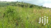 5 Acres of Land for Sale in Butunduzi, Kyenjojo District. | Land & Plots For Sale for sale in Western Region, Kyenjojo