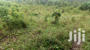Full Plots for Sale in Kitumba, Fort Portal | Land & Plots For Sale for sale in Western Region, Kabalore