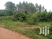 270 Acres in Bukandula Gomba 9.5km Off Main Rd | Land & Plots For Sale for sale in Central Region, Mpigi