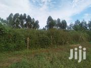 Titled Land for Sale | Land & Plots For Sale for sale in Central Region, Wakiso