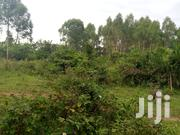 500 Titled Acres In Matte Along Hoima Rd 6km From Main Rd | Land & Plots For Sale for sale in Central Region, Wakiso