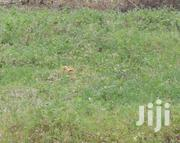 100×50ft Land for Sale | Land & Plots For Sale for sale in Central Region, Mukono
