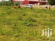 Busukuma Plots For Sale Gayaza Road. | Land & Plots For Sale for sale in Central Region, Wakiso
