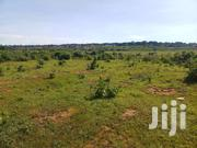 Land In Garuga | Land & Plots For Sale for sale in Western Region, Kisoro
