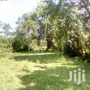 Theybare 2 Titled Acres for Sale in Kitezzi at 230M Ugx Each | Land & Plots For Sale for sale in Central Region, Kampala