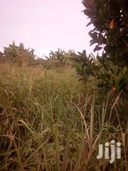 11 Acres in Luweero | Land & Plots For Sale for sale in Central Region, Luweero