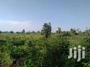 20 Acres On Quicksale In Gomba Bukandula Kandegeya With Private Title | Land & Plots For Sale for sale in Central Region, Kampala