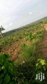 25 Acres Land In Hoima For Sale | Land & Plots For Sale for sale in Central Region, Kiboga