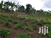 70 Acres Land In Hoima For Sale | Land & Plots For Sale for sale in Central Region, Kiboga