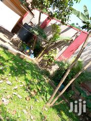 Four Bedroom House Close The Main Road For Sale   Houses & Apartments For Sale for sale in Central Region, Kampala