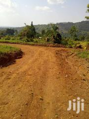 Land For Sale 7acre Per Acre @15m Ugx Nakifuma | Land & Plots For Sale for sale in Central Region, Kampala