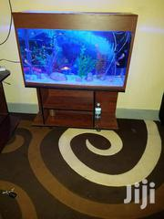 An Aquarium Sitted On A Wooden Stand | Pet's Accessories for sale in Central Region, Kampala